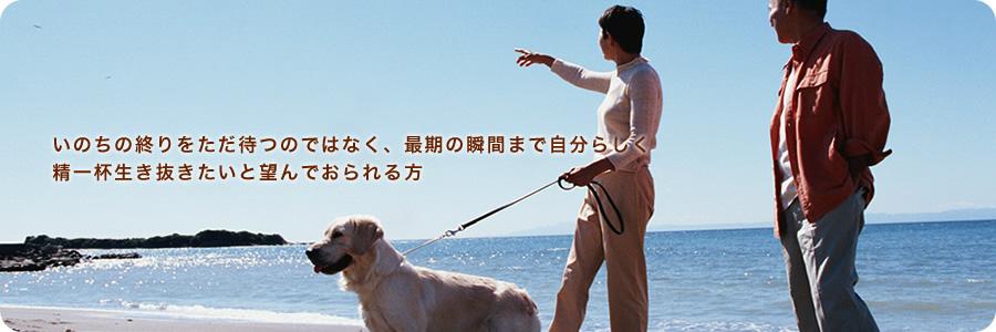 森本医院 森本クリニック|神戸市兵庫区|緩和ケア 麻酔科 ホスピスケア がん 訪問診療